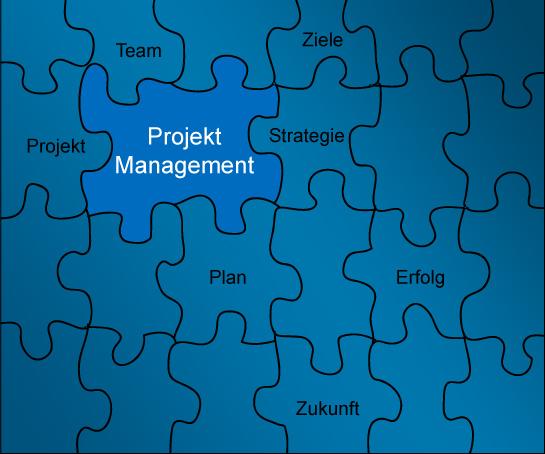 mamagement projekte